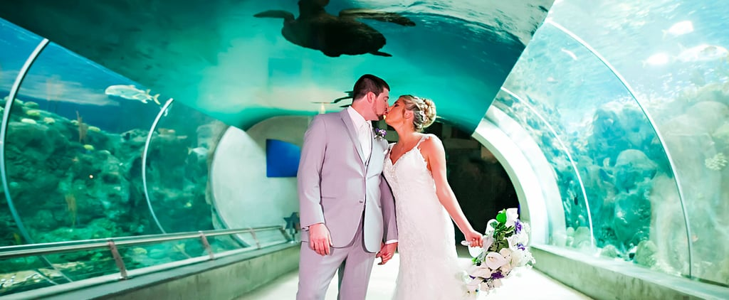 A Bride Named Ariel Got Married at an Aquarium – How Perfect Is That?!