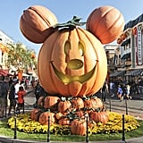 You're greeted by a giant pumpkin Mickey on Main Street.