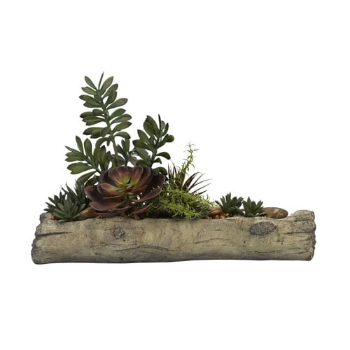 Madeline: D&W Silks Assorted Succulents on Cement Log