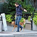 Ryan took Baxter for a walk in Boston.