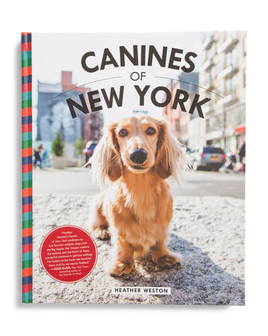 Canines of New York
