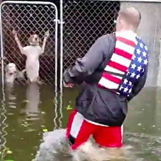 Man Rescues Dogs From Cages After Hurricane Florence