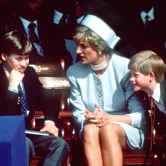 Princess Diana Traveling With William and Harry Photos