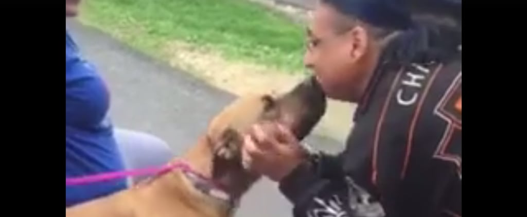 It'd Been 2 Years, but This Lost Pup Never Forgot His Human
