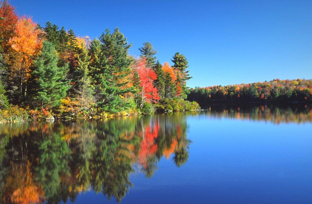 Leaf Peep in the Berkshires