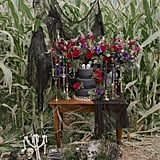 Halloween Corn Maze Wedding Ideas