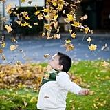 Slow-Motion Leaf Toss