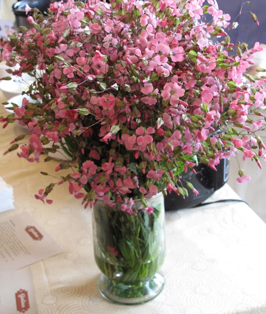 Beautiful Flowers at the Gialina Table