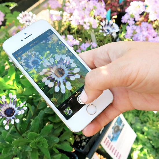 Tips For Smartphone Photos