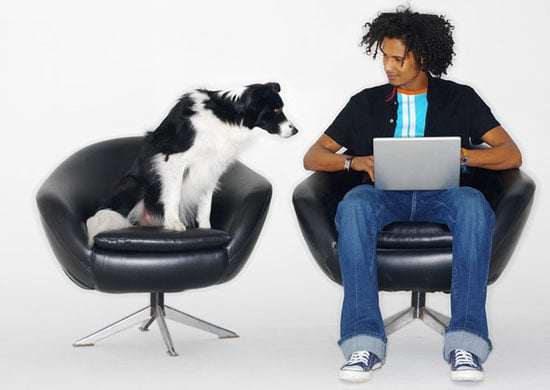 Do Tell: Would You Bring Your Pet to Work?