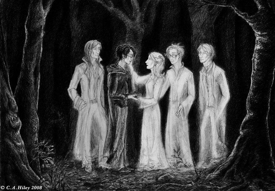 Harry and the Resurrection Stone