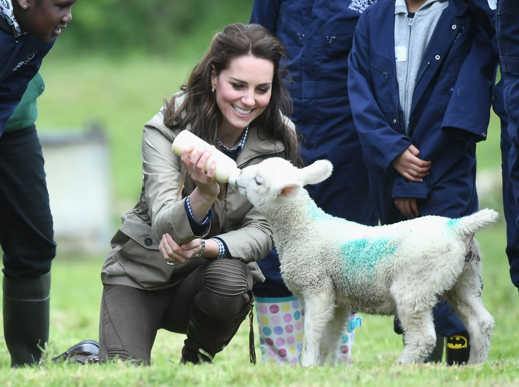 """The Duchess of Cambridge doesn't need to be with Prince George and Princess Charlotte to show off her maternal side. Kate was all kinds of cute during a trip to a Gloucestershire farm on Wednesday. Dressed casually in olive trousers, a navy jumper, and a khaki jacket, Kate appeared to have a blast while visiting the Farms for City Children charity, which provides inner-city kids with the opportunity to live and work on a farm for a week. Aside from touring the grounds, the mother of two had a particularly adorable encounter with one of the farm's furry animals as she casually fed a lamb with a bottle. The recent appearance is particularly special for Kate, as she revealed in September that she'd secretly like to be """"a young farmer"""" and is teaching Prince George and Princess Charlotte about the farm at the family's country home in Norfolk.      Related:                                                                                                           The Duchess of Cambridge Is Not Too Princess-y to Play Sports"""