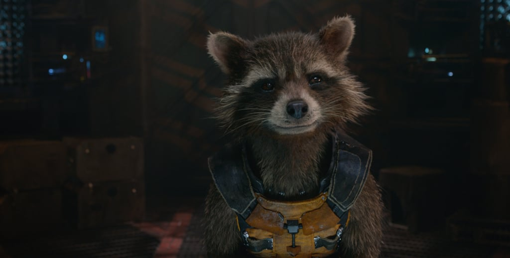 Rocket From Guardians of the Galaxy