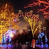ZooLights at Smithsonian's National Zoo in Washington, D.C.