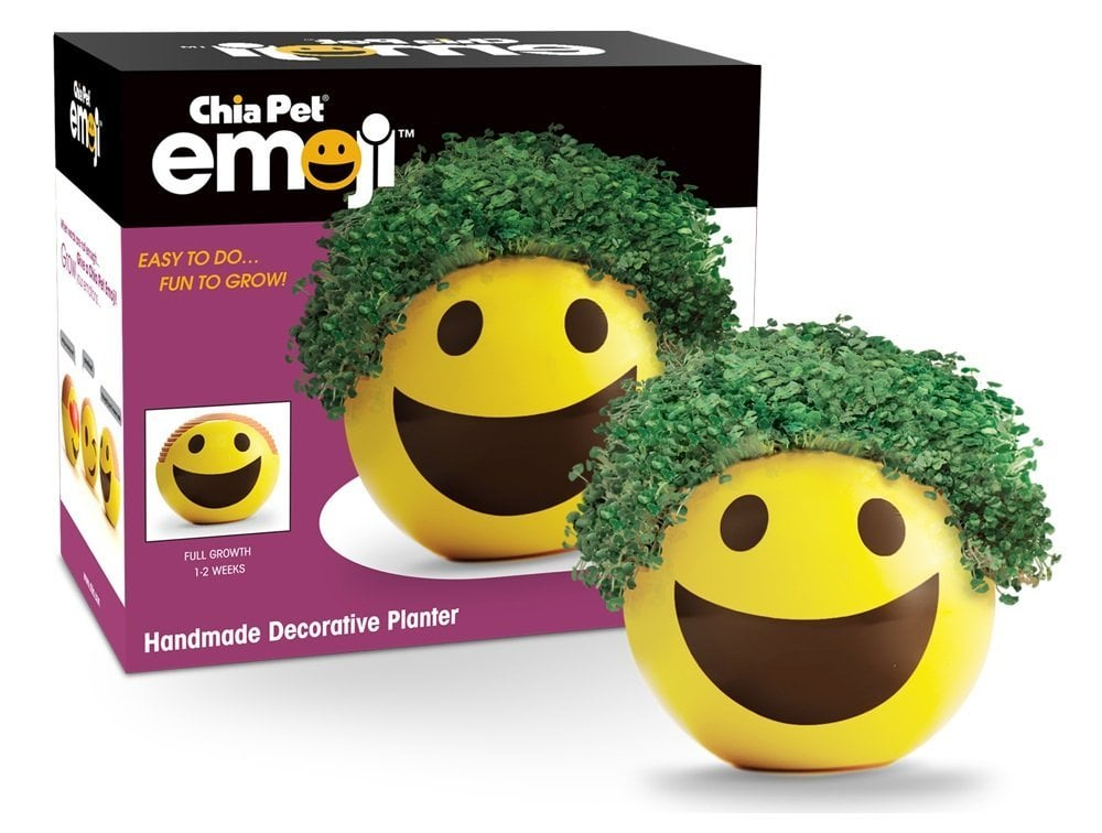 Chia Pet Emoji Smiley