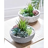 Aldi Artificial Plant in Marble Style Pot