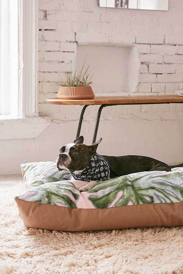 Dog Beds at Urban Outfitters