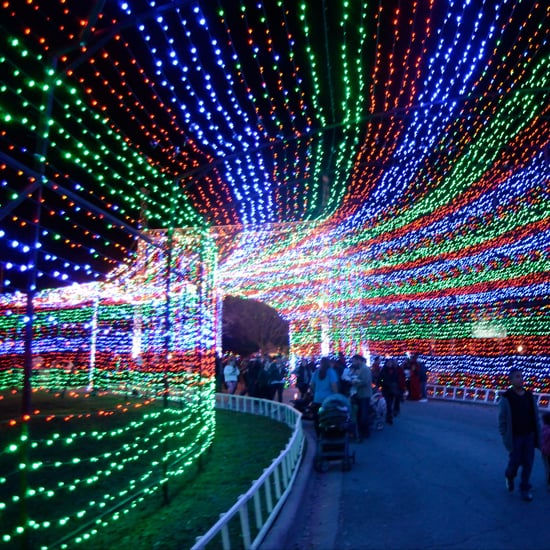 Best Christmas Lights in America