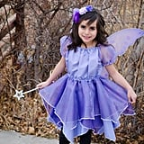 Fairy Pixie Princess
