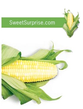 More on High Fructose Corn Syrup