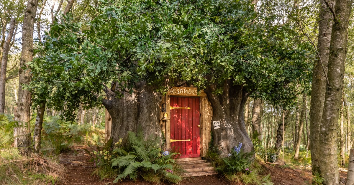 Disney Fans Can Stay in This Winnie the Pooh Tree-House Airbnb For Just $105 a Night.jpg