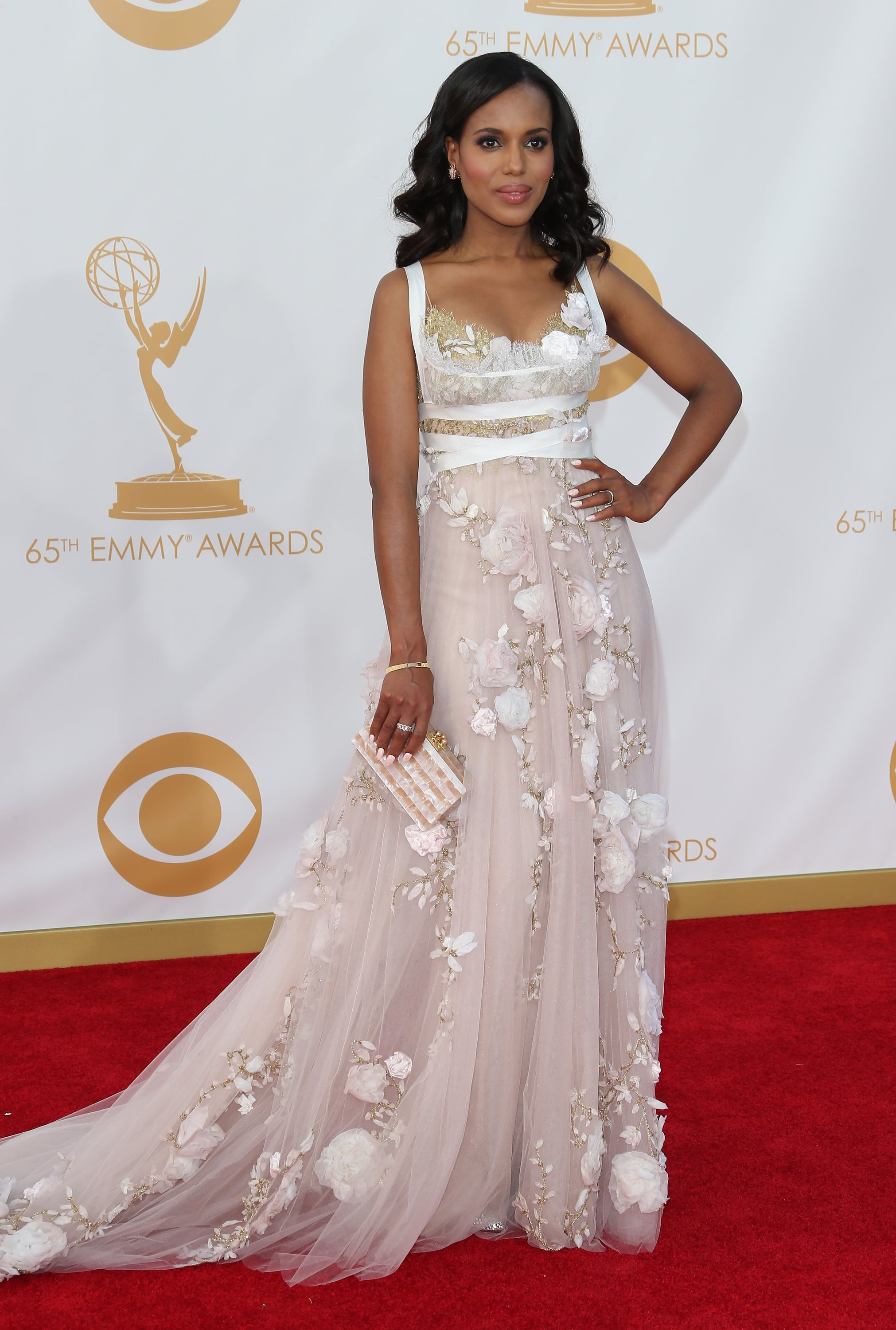 At the 2013 Emmy Awards, Washington wore a pale pink, high-waisted gown from Marchesa that was dotted with delicate floral embroidery.