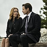 Scully and Mulder From X-Files