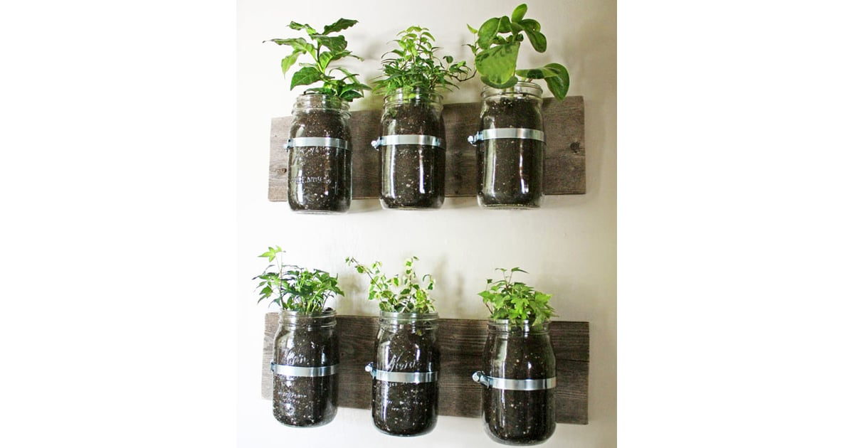 Create an indoor herb garden rainy day activities for for Indoor gardening lesson