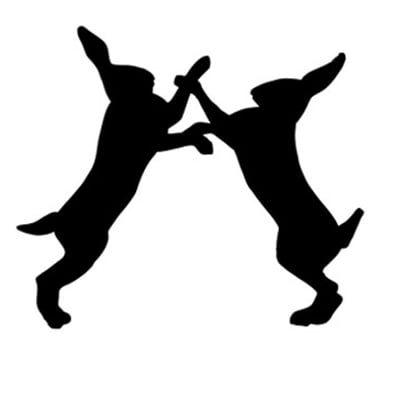 Lush Cosmetics Launches Fighting Animal Testing Campaign