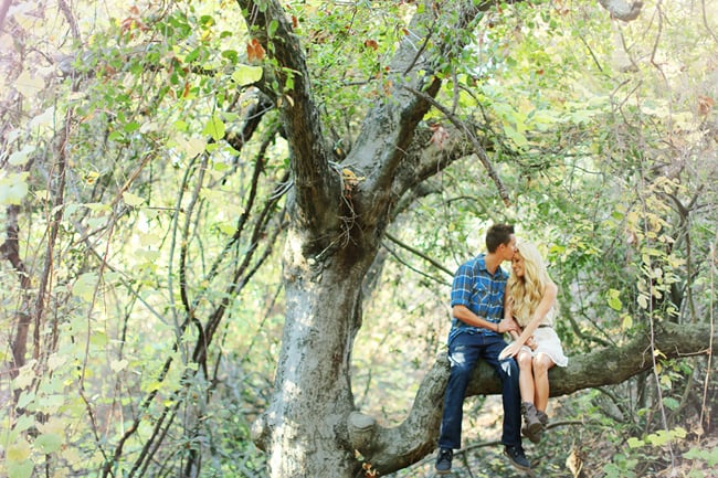 Sit in a Tree