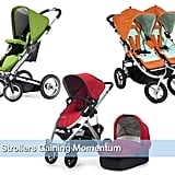 Which Stroller Piques Your Interest?