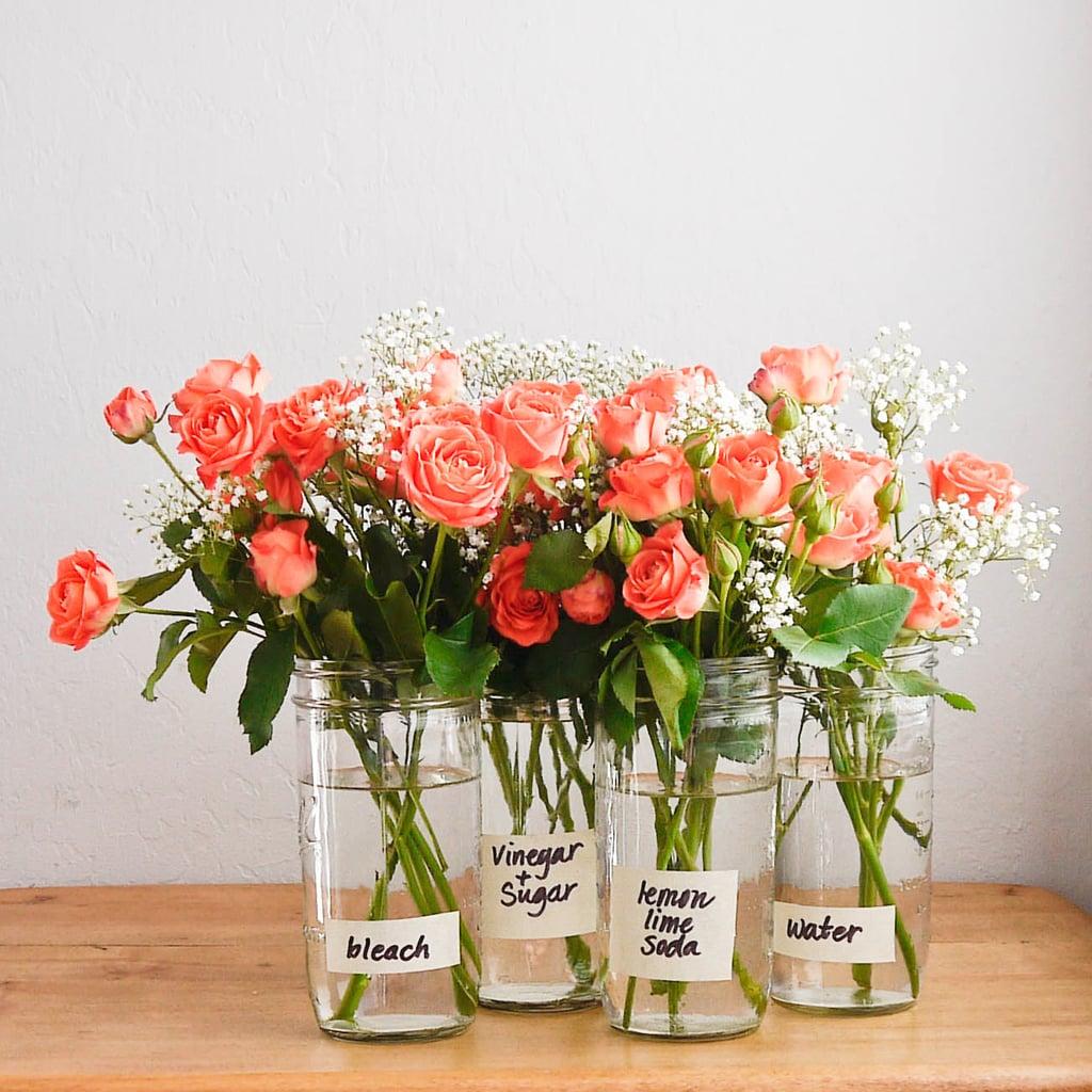 How to Make Flowers Last Longer | POPSUGAR Smart Living