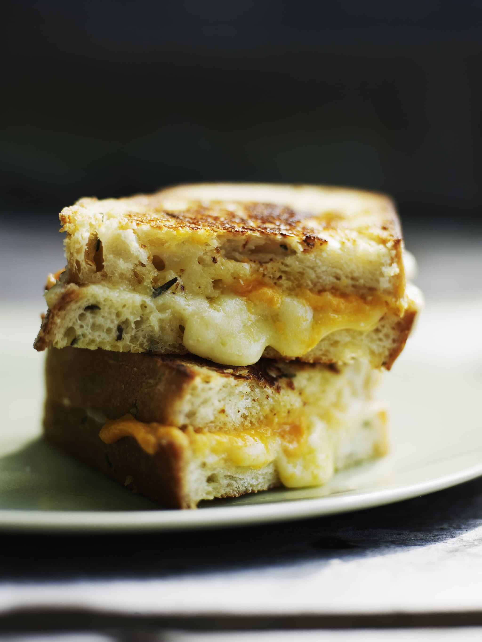 Grilled cheese sandwich with aged cheddar on rosemary crusty bread