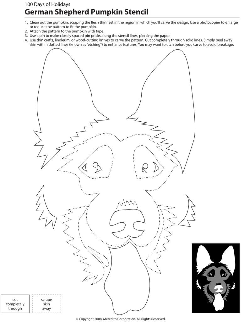Downloadable dog breed pumpkin stencils popsugar home