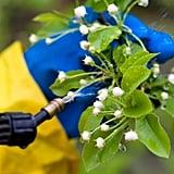 Avoid Pesticides
