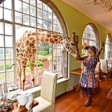 Stay at the Giraffe Manor in Nairobi