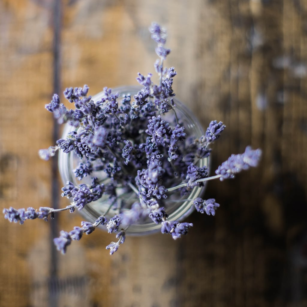 Does Lavender Help You Sleep?