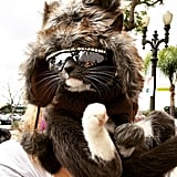 Sunglass Cat hung around the Con in her typical laid-back style.