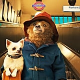 Paddington Bear From Paddington 2