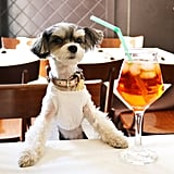 . . . and sip on a traditional Italian Aperol Spritz!