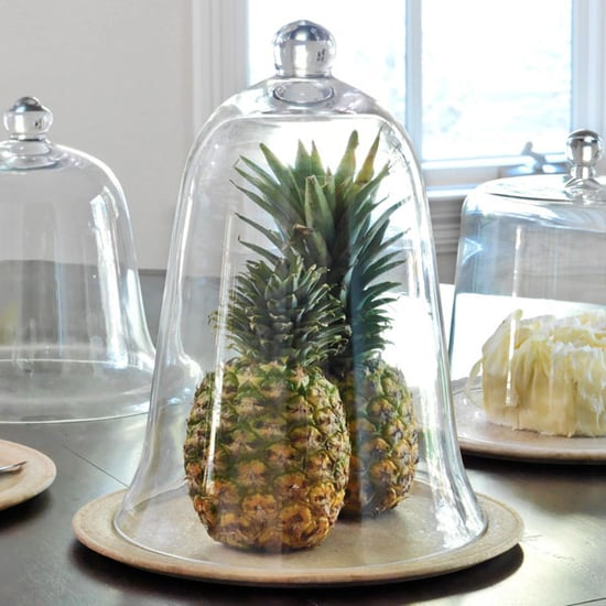 Steal of the Day: Tall Glass Cloche