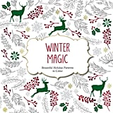 Winter Magic Adult Coloring Book