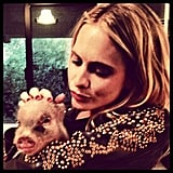 Poppy Delevingne cuddled with a piglet. Source: Instagram user poppydelevingne