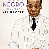Non-fiction: The New Negro by Jeffrey C. Stewart