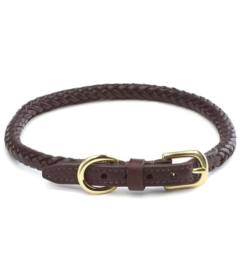 Brooks Brothers | Braided Leather Dog Collar Strap (Now $29)