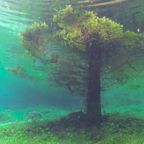 Underwater Park in Austria