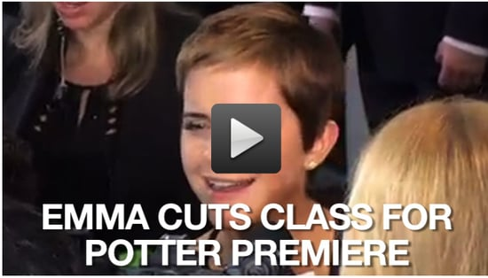 Video of the New York Premiere of Harry Potter and the Deathly Hallows: Part I