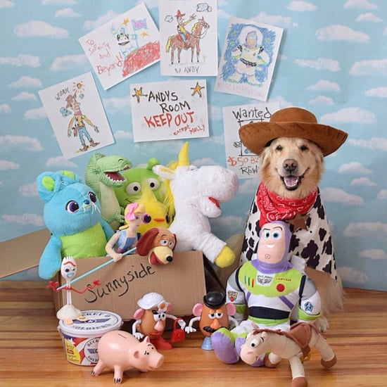 Disney Halloween Costume Ideas For Dogs