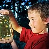 Catch fireflies.