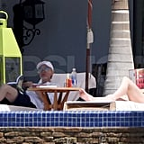 Pictures of Portia and Ellen Swimsuits